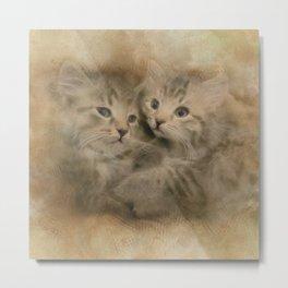 Two Cute Gray Striped Kittens Metal Print