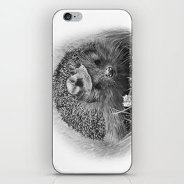 Hedgehog iPhone Skin