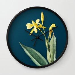 Vintage Bandana of the Everglades Botanical Illustration on Teal Wall Clock