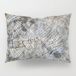 Old Tree Rings Pillow Sham