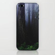 Redwood Forest iPhone & iPod Skin
