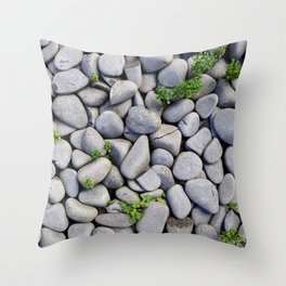 Smooth Stone Dry River Bed Throw Pillow