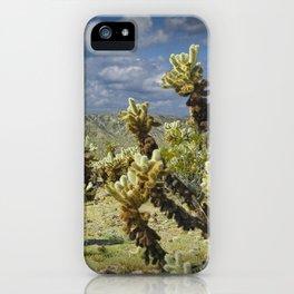 Cactus called teddy bear cholla No.0265 iPhone Case