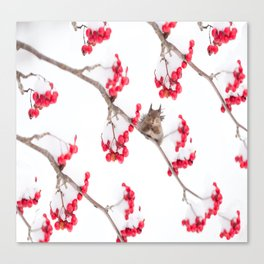 Cute Squirrel With Red Rowan Berries On A White Background #decor #society6 #buyart Canvas Print