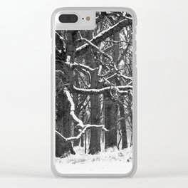 Tree in the winter (RR 272) Clear iPhone Case