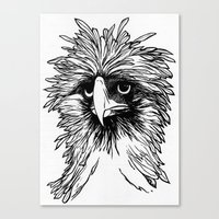 hawk Canvas Prints featuring Hawk  by Art is Vast