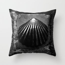 shot on iphone .. bronze shell Throw Pillow
