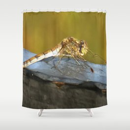 Resting Dragonfly Shower Curtain