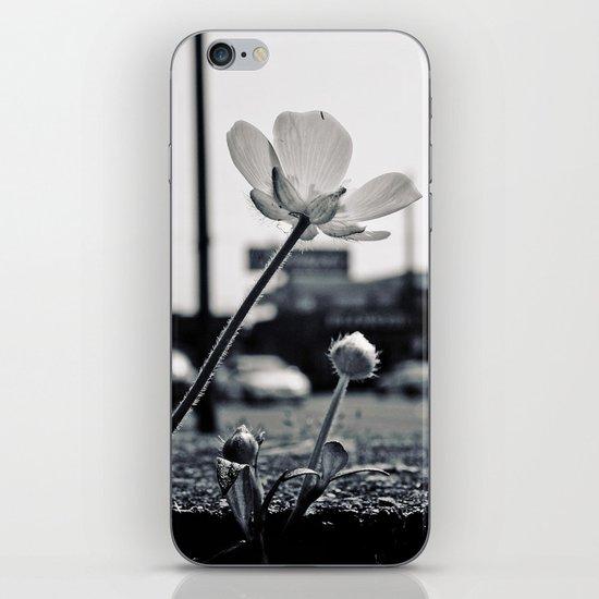 Roadside beauty iPhone Skin
