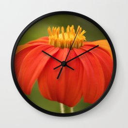Mexican Sunflower Wall Clock