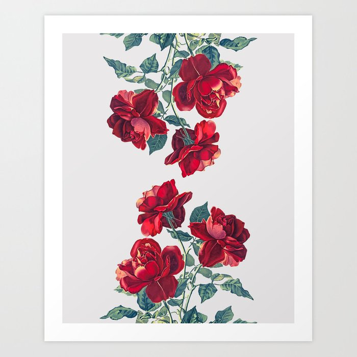 Red Roses Art Print By Heartofhearts Society6