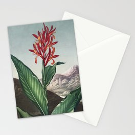 Indian Reed from The Temple of Flora (1807) by Robert John Thornton. Stationery Cards