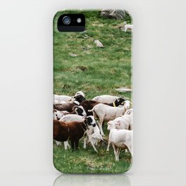Goat Herd in the Pyrénées Mountains iPhone Case