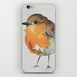 Robin Bobin Along iPhone Skin
