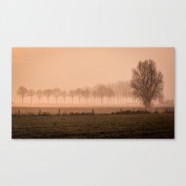 Dutch rural landscape Canvas Print