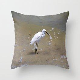 Dangerous Pursuit Throw Pillow