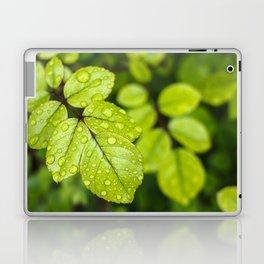 Plant Patterns - Green Scene Laptop & iPad Skin