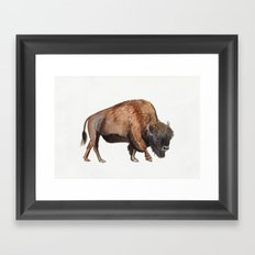 Little Watercolour Bison Drawing Framed Art Print