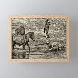 Horses taking a bath and relaxing Framed Mini Art Print
