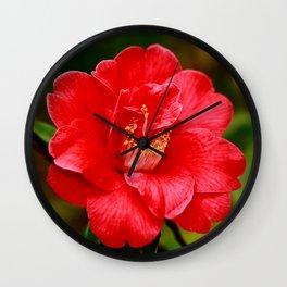 Camellia japonica Wall Clock
