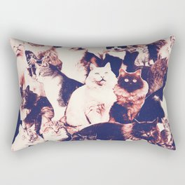 Cats. Forever. Rectangular Pillow