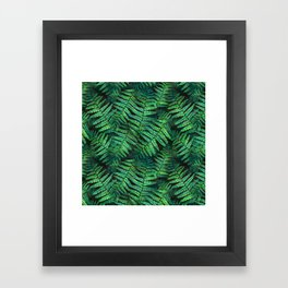 Among the Fern in the Forest Framed Art Print