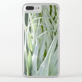 Smooth Cactus Core Clear iPhone Case