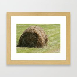 Hay Bale in a Field Framed Art Print