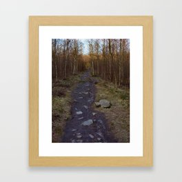 Path through the forest Framed Art Print