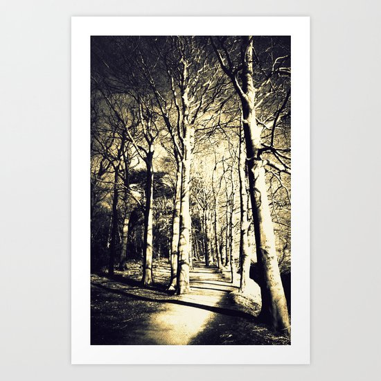 Awakening Light  Art Print