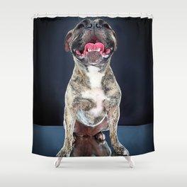 Super Pets Series 1 - Super Riley Shower Curtain