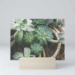 Succulent Forest Mini Art Print