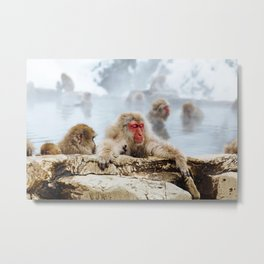 The Japanese macaque also known as the snow monkey Metal Print