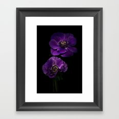 Two Purple Anemones Framed Art Print