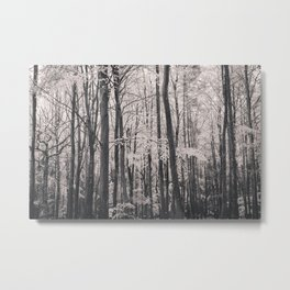 Deep in Woodland Metal Print