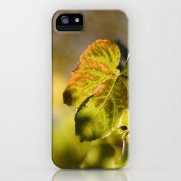 Autumn Grape Leaf iPhone Case