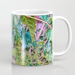 Budding in the rainforest Coffee Mug