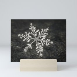 Freshly Fallen Snow Flake. Macro Photography Mini Art Print
