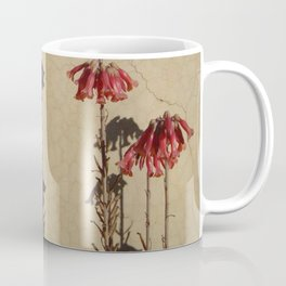 Shadows and flowers Coffee Mug