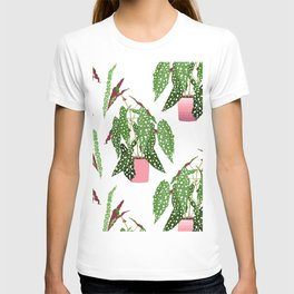Simple Potted Polka Dot Begonia Plants in White T-shirt