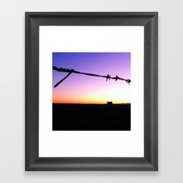 Cow vs Sunset Framed Art Print