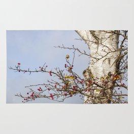 Rosehips, Birch And Sky Rug