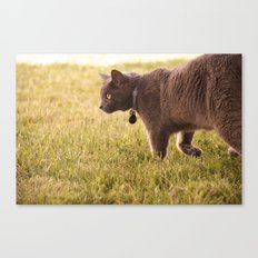 Surveying His Own Canvas Print