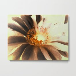 Kaktus Flower Metal Print