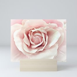 Shabby Chic Pastel Pink Rose Mini Art Print