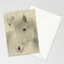 Dreaming Horse Stationery Cards