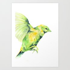 Bird, Sparrow Art Print
