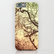 Branches With Reflections Slim Case iPhone 6s