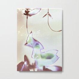 Lumen S5 VE5 Metal Print
