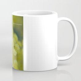 Silver Wattle Coffee Mug